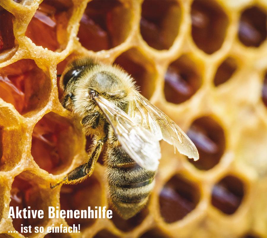 Bienenhilfe Warbe